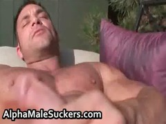 alpha males in hot gay hardcore gays