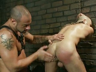 bald gay man had his balls tortured