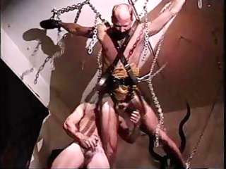 buff master suspends his gay slave and tortures