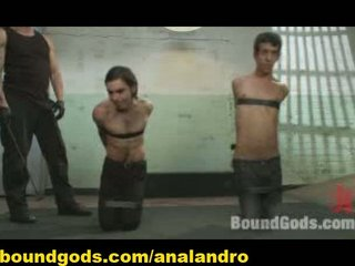 two gay slaves bound, beat and device fuckrd by