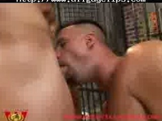 prison wrestling group fuck gay fuck gays gay cum