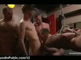 bound suspended gay licks libidos and cums