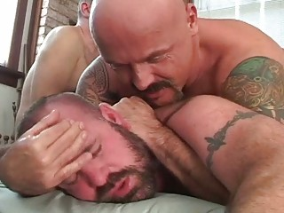 busty gay bears having insane three people pierce