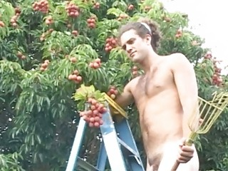 charming gay stud picking fruits fully showed