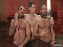 alessio and leo into naughty extreme gay gay porno