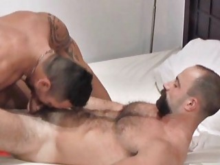 awesome beared cougar gay stud takes roughly