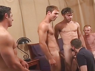 astonishing gay stud bunch  fuck