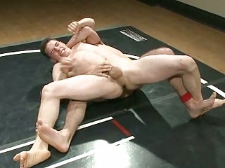 inflexible gay guys obtaining mad during wrestle