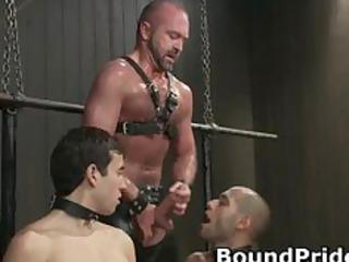 hogtied gay slaves getting jerked off part1