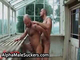 super alpha males into gay gangbanging part4