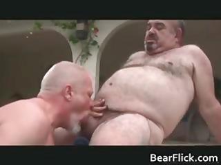 large ed hardwood and jordi fabe gay bear part1